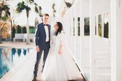 Hochzeitspaarbraut- und -br?utigamh?ndchenhalten lizenzfreies stockfoto