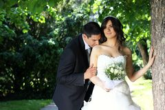 Hochzeitspaare Stockbild