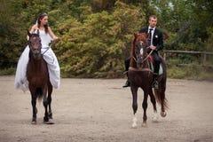Hochzeitspaare auf Pferden Lizenzfreie Stockfotos