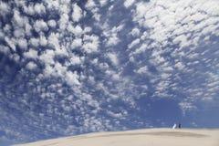 Hochzeitspaare in der Wüste Stockbilder