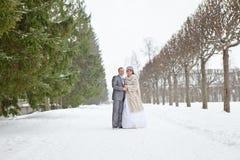 Hochzeitspaare, die auf schneebedeckten Park gehen Lizenzfreie Stockfotografie