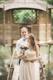 Hochzeitspaare, die an der Brücke umarmen und küssen lizenzfreies stockbild