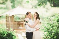 Hochzeitspaare, die an der Brücke umarmen und küssen stockbild