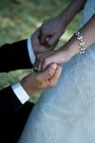 Hochzeitspaare, die Hände anhalten Stockfoto