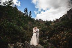 Hochzeitspaare, die nahe dem See in Tatra-Bergen in Polen gehen Morskie Oko Sch?ner Sommer-Tag stockbild