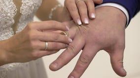Hochzeitspaare, die Ringe austauschen stock video footage