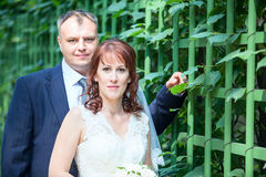 Hochzeitspaarporträt mit grünem Zaun, copyspace Stockbild