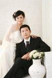 Hochzeitspaarportrait Lizenzfreie Stockfotos