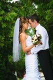 Hochzeitspaarstellung, Umarmung und einander betrachten Stockfotos