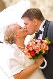 Hochzeitsportrait stockbild