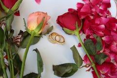 Hochzeitsringe auf Blumen Lizenzfreie Stockfotos