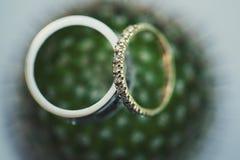 Hochzeitsringe auf einer Blume Lizenzfreies Stockfoto