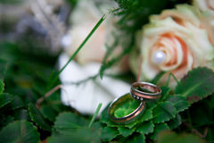 Hochzeitsringe auf grünem Blatt Stockbild
