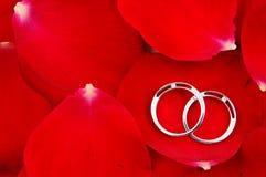 Hochzeitsringe in den roten rosafarbenen Blumenblättern Stockfotografie