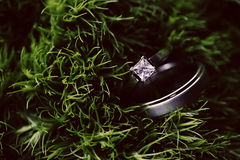 Hochzeitsringe im Gras stockfotos
