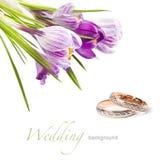 Hochzeitsringe und -blume Stockfoto