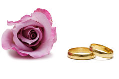 Hochzeitsringe und eine Rose. lizenzfreies stockfoto