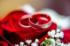 Hochzeitsringe und rote Rosen Lizenzfreie Stockfotos