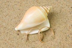 Hochzeitsringe und Seashell Stockfoto