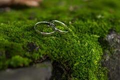 Hochzeitsringe und -steine Stockfoto