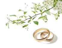Hochzeitsringe und weiße Blumen Lizenzfreie Stockfotos