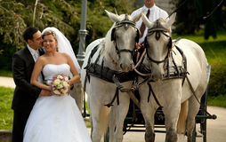 Hochzeitsserie, Wagen lizenzfreie stockfotos
