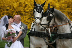 Hochzeitsserie, Wagen Lizenzfreies Stockfoto