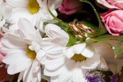 Hochzeitszeremonieeheringe auf Blumen Lizenzfreies Stockfoto