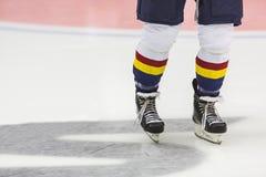 hockey Immagine Stock Libera da Diritti