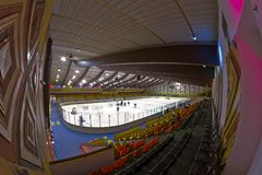Hockey in Action royalty free stock photo