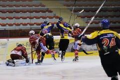 Hockey Celebration Royalty Free Stock Photo