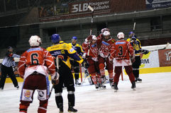 Hockey Celebration Stock Photo