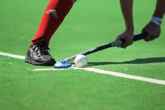 Hockey de champ images libres de droits