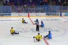 Hockey de traîneau Photographie stock libre de droits