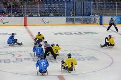 Hockey del trineo Fotografía de archivo libre de regalías
