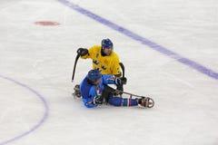 Hockey del trineo Fotos de archivo