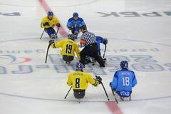 Hockey del trineo Fotos de archivo libres de regalías
