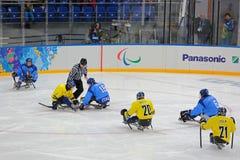 Hockey del trineo Imagen de archivo