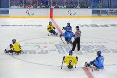 Hockey del trineo Imagenes de archivo