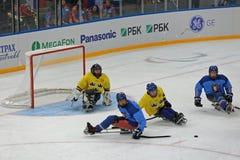 Hockey del trineo foto de archivo