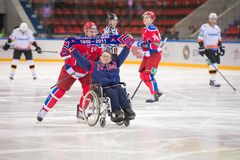 Hockey fan Stock Images