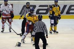 Hockey fight Royalty Free Stock Photography