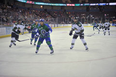 Hockey Game. Minor league Hokey Game, Columbus Cottonmouths VS Mississippi RiverKings stock photography