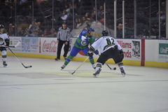 Hockey Game. Minor league Hokey Game, Columbus Cottonmouths VS Mississippi RiverKings stock photo