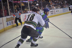 Hockey Game. Minor league Hokey Game, Columbus Cottonmouths VS Mississippi RiverKings stock photos