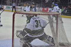 Hockey Game. Minor league Hokey Game, Columbus Cottonmouths VS Mississippi RiverKings stock images