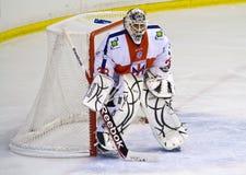 Hockey goalie Royalty Free Stock Images