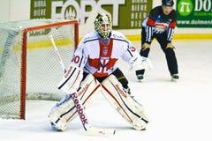 Hockey goalie Andrew Raycroft stock photography