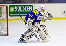 Hockey goalie G.Vallini Stock Image