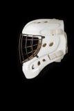 Hockey Goalie Helmet Stock Images